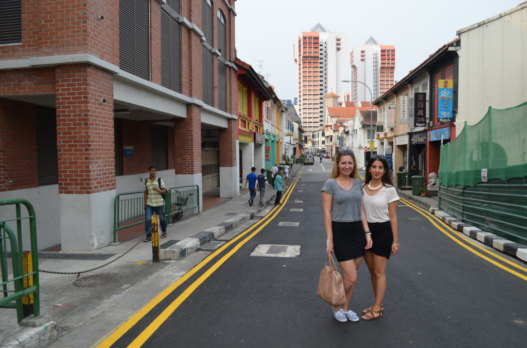 fællesskab nye venner malaysia study abroad