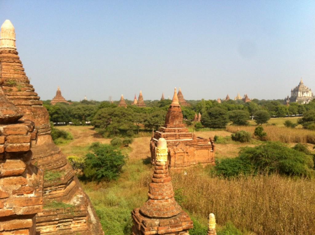 bagan myanmar study abroad med studysea